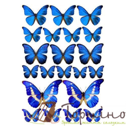 Вафельная пластина Бабочки 3