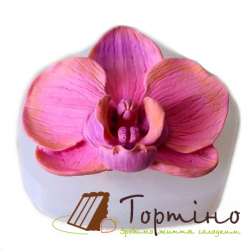Молд 3D Орхидея Большая